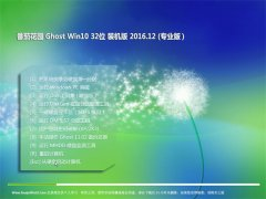 番茄花园Ghost Win10 x32位 标准装机版v201612(无需激活)