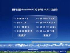 新萝卜家园Ghost Win10 X32位 安全稳定版V2016年12月(永久激活)