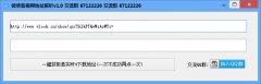 微录客视频解析下载工具 V1.0 绿色版
