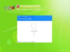 新萝卜家园Windows10 32位 稳定2021新年春节版